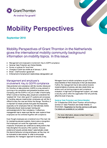 Mobility Perspectives - Grant Thornton